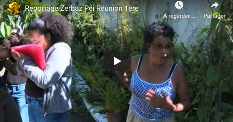 Reportage Zerbaz Péi